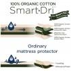 Living Textiles Bassinet Organic Mattress Protector
